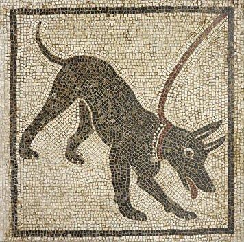 pompeii_dog1